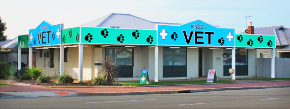 About Findon Vet Surgery 1