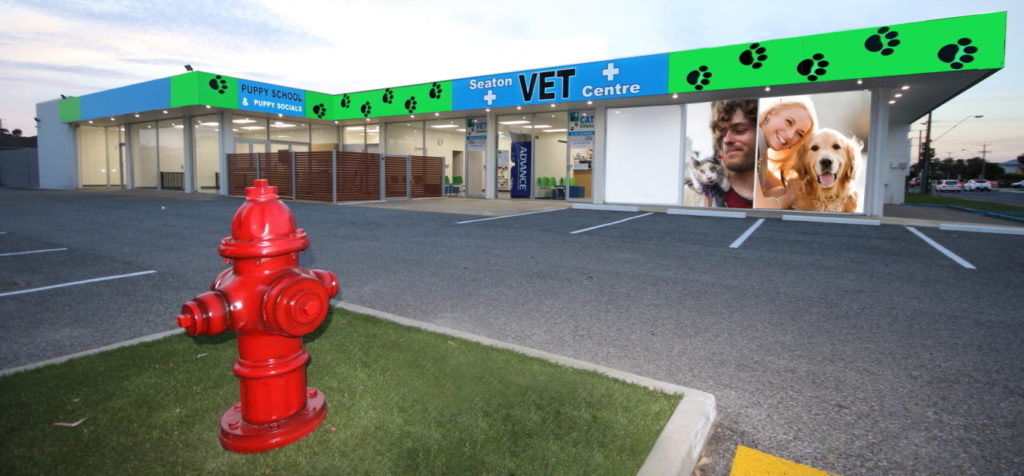 About Seaton Vet Centre 1