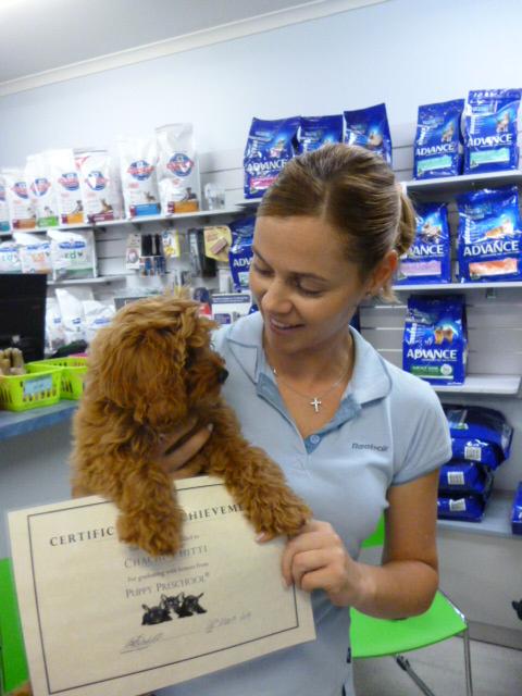 Seaton Puppy Centre - Puppy Preschool 4