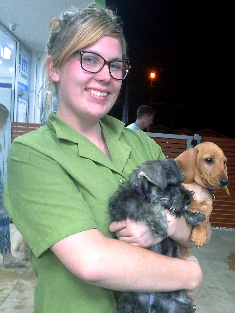 Seaton Puppy Centre - Puppy Preschool 2