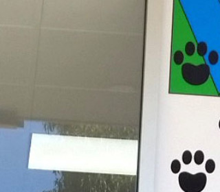 Seaton Cat Clinic and Boarding 4