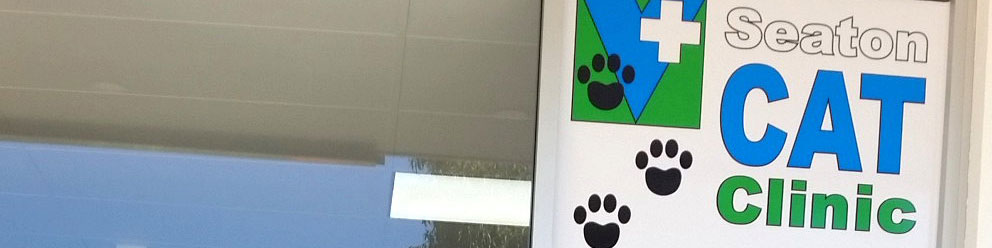 Seaton Cat Clinic and Boarding