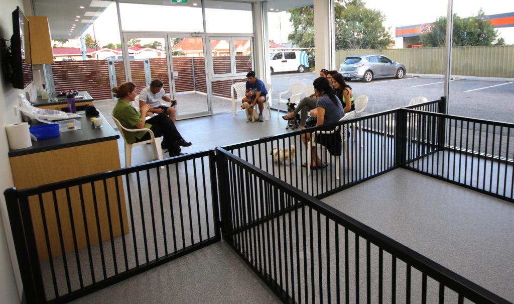 Seaton Puppy Centre - Puppy Preschool 1